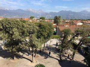 parco scuola alberi natura montagne